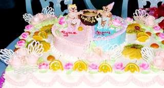 Любимцы уссурийской зооэкспозиции отметили день рождения