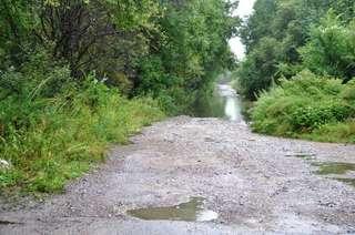 За сутки в Уссурийском городском округе выпало 20,5 мм осадков