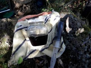 Уссурийские полицейские задержали подозреваемого в хранении гашишного масла в крупном размере