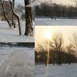 Во второй половине ноября в Уссурийске ожидается понижение температуры на 10 градусов