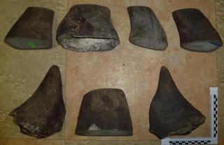 Уссурийская таможня задержала рога носорога стоимостью почти 10 млн рублей