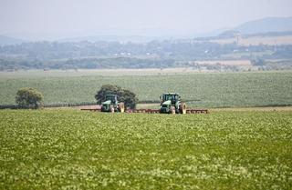 Более 30 тысяч заявок на дальневосточный гектар поступило в Приморье