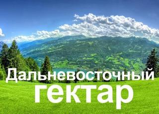 За Дальневосточным гектаром в Уссурийском городском округе уже обратились более 500 россиян