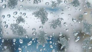 Снег с дождем пройдет в Уссурийске