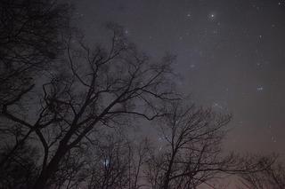 Звездопад на уссурийском небе