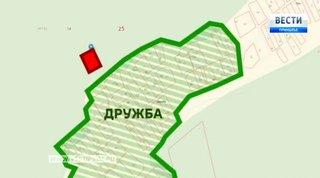 Уссурийский садовод обманул муниципалитет и вырубил деревья на 500 тысяч рублей