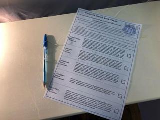 Более 30% избирателей проголосовали на выборах Губернатора Приморья