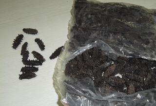 Более 13 кг сушеного трепанга задержали уссурийские таможенники