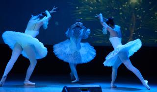 Музыкальное представление «Новогодний серпантин» прошло в Уссурийске