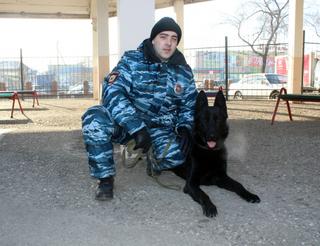 В Уссурийске служебная собака по кличке Бандит помогла поймать наркомана