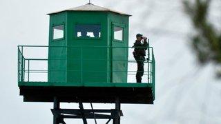 В поисках лучшей жизни и дикоросов нарушают иностранцы госграницу России