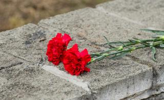 Уссурийцев приглашают присоединится к Всероссийской военно-патриотической акции «Горсть памяти»