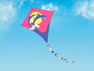 Небо Уссурийска украсят воздушные змеи