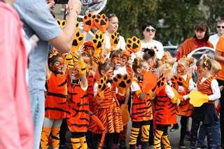 День тигра отметят в Уссурийске 29 сентября