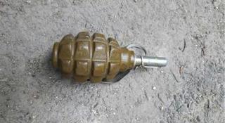 Жители Уссурийска обнаружили гранату в мусорном баке