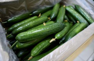 60 фур с овощами зашли в Приморье из Китая
