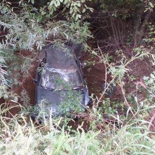 Жительница Приморья вместо грибов обнаружила в лесу неожиданную находку