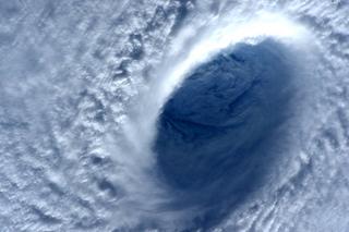 Дождь и сильный ветер ожидаются завтра в Уссурийске