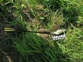 В Уссурийске на территории колонии обнаружена арбалетная стрела с наркотиками