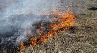 Пожароопасный сезон начал действовать в Уссурийске