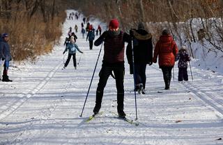 Спортивные выходные в Приморье – фестиваль «Народная рыбалка», забеги на собачьих упряжках и автогонки на льду