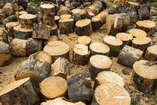 Жителей уссурийских сел обеспечат дровами