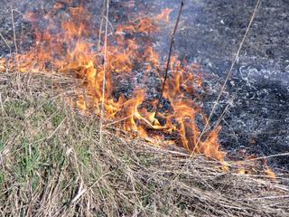 В Уссурийске проводится подготовка к пожароопасному сезону