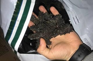 Контрабанду более 700 кг соленого трепанга пресекла  Уссурийская таможня