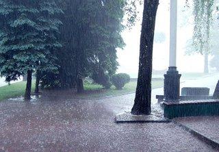 МЧС: В Уссурийском районе ожидается очень сильный дождь
