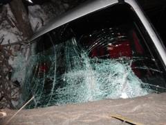 В Уссурийске пьяная автомобилистка врезалась в дерево