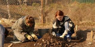 В Приморье «НТК» поставила под угрозу памятники археологии