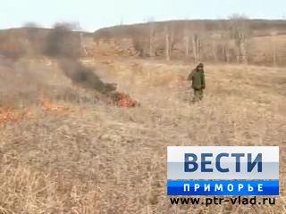 Уссурийские лесники проводят выжигание прошлогодней травы