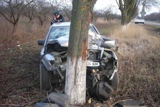 Пожилой водитель въехал в дерево