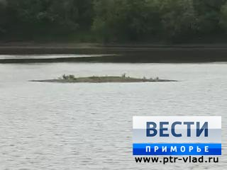 В Уссурийске по пути на пикник утонули две 14-летние девочки